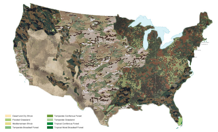 US Camo map based on biomes