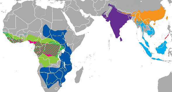 Pangolin Range Map - Did You Know There Are 8 Different Species?